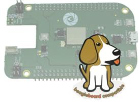 Beaglebone compatible boards