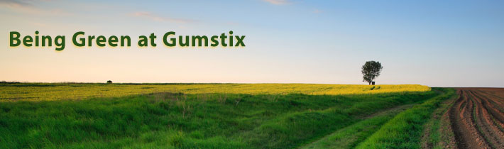 environmental policy of gumstix